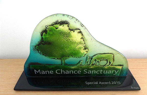 mane chance summer ball 3
